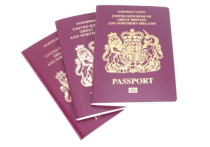 Accommodation Reports for Immigration